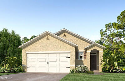 New Smyrna Beach Single Family Home For Sale: 2810 Taton