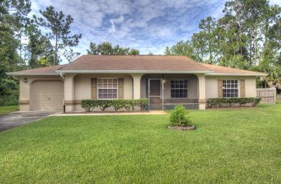 Palm Coast Single Family Home For Sale: 14 Burgess Place