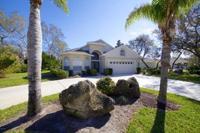 Ormond Beach Single Family Home For Sale: 1120 Killarney Drive