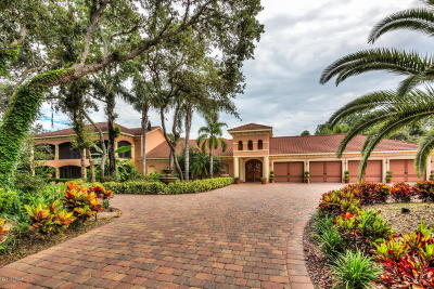 Volusia County Single Family Home For Sale: 817 Hail Court