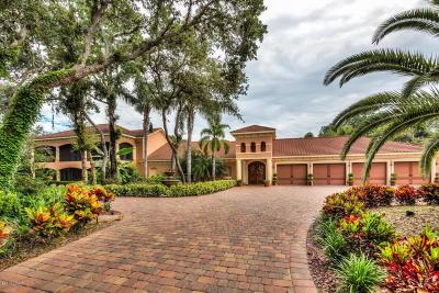 Port Orange Single Family Home For Sale: 817 Hail Court