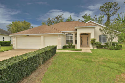 Port Orange Single Family Home For Sale: 5915 Springview Drive