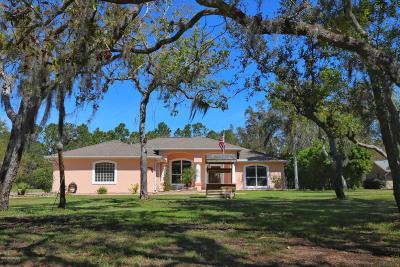 New Smyrna Beach Single Family Home For Sale: 632 Art Center Avenue