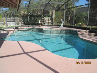 New Smyrna Beach Single Family Home For Sale: 322 Trudgeon Drive