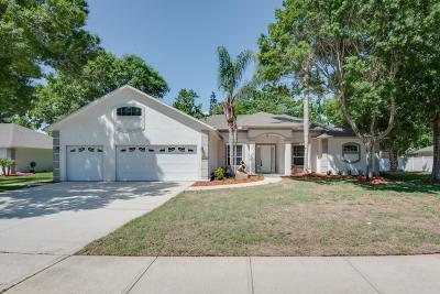Port Orange Single Family Home For Sale: 3728 Sunrise Oaks Drive