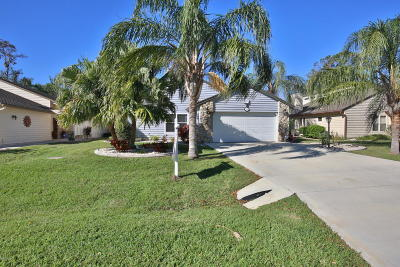 Volusia County Single Family Home For Sale: 116 N Gull Circle
