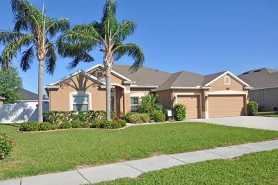 Volusia County Single Family Home For Sale: 807 Snapdragon Drive