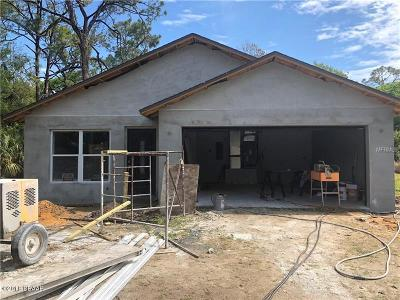 Volusia County Single Family Home For Sale: 731 Alabama Street