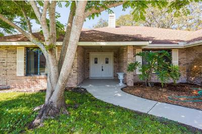 Spruce Creek Fly In Single Family Home For Sale: 63 Lazy 8 Drive