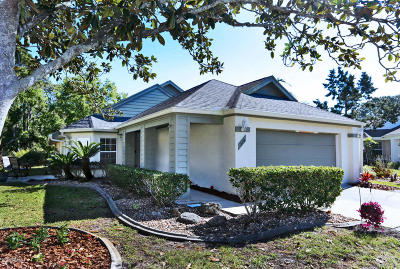 Daytona Beach Single Family Home For Sale: 328 Glenbriar Circle