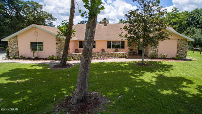 Port Orange Single Family Home For Sale: 1999 N Spruce Creek Circle