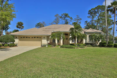 Daytona Beach Single Family Home For Sale: 600 Sea Duck Drive