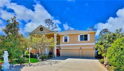 Palm Coast Single Family Home For Sale: 3 Zorro Court