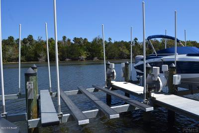 Palm Coast Boat Slip For Sale: 58 Canopy Walk Lane