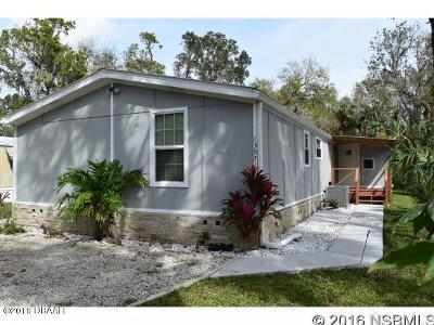 New Smyrna Beach Single Family Home For Sale: 1397 Elizabeth Street