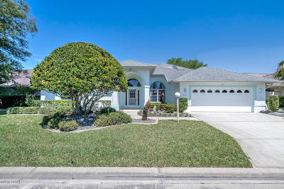 Ormond Beach Single Family Home For Sale: 35 Kingsley Circle