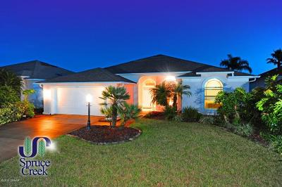 Spruce Creek Fly In Single Family Home For Sale: 3112 Waterway Place