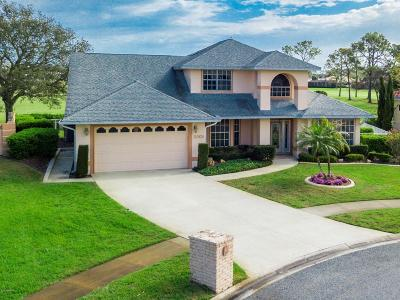 Port Orange Single Family Home For Sale: 3301 Oak Vista Drive