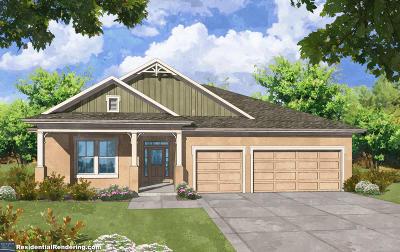 Hunters Ridge Single Family Home For Sale: 52 Ashford Lakes Drive