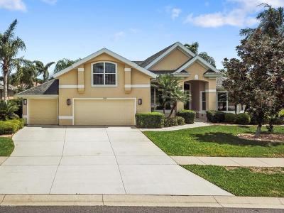 Port Orange Single Family Home For Sale: 6109 Sanctuary Garden Boulevard
