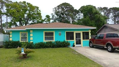 South Daytona Single Family Home For Sale: 2513 Anastasia Drive
