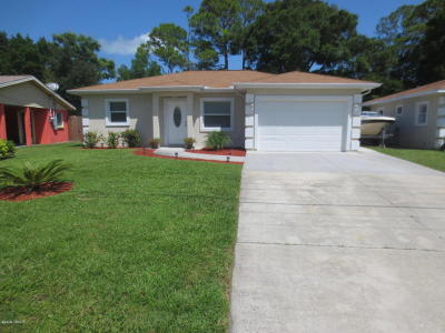 South Daytona Single Family Home For Sale: 2509 Anastasia Drive