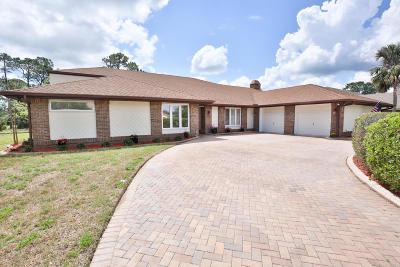 Daytona Beach Single Family Home For Sale: 145 Mallard Lane