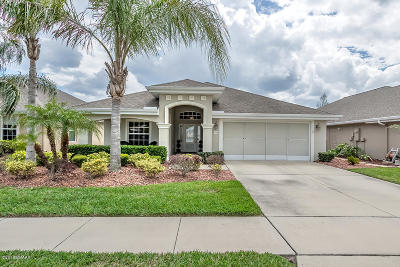 Port Orange Single Family Home For Sale: 1718 Weeping Elm Circle