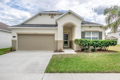 New Smyrna Beach Single Family Home For Sale: 2710 Atlantis Drive