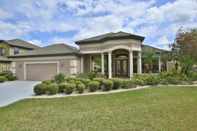 Port Orange Single Family Home For Sale: 6731 Merryvale Lane