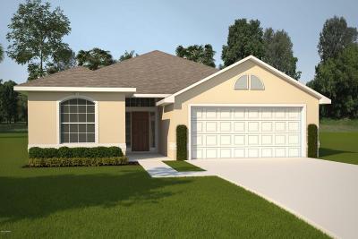 Palm Coast Single Family Home For Sale: 57 Park Place Circle