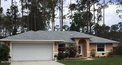 Palm Coast Single Family Home For Sale: 141 Bren Mar Lane