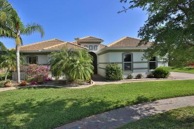 New Smyrna Beach Single Family Home For Sale: 3527 Grande Tuscany Way