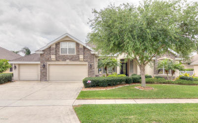 Port Orange Single Family Home For Sale: 6617 Merryvale Lane
