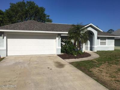 Port Orange Single Family Home For Sale: 618 Newton Road