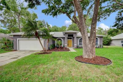 Port Orange Single Family Home For Sale: 6174 Half Moon Drive