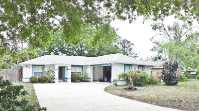 New Smyrna Beach Single Family Home For Sale: 327 Handley Drive