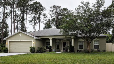 Palm Coast Single Family Home For Sale: 21 Brigadoon Lane