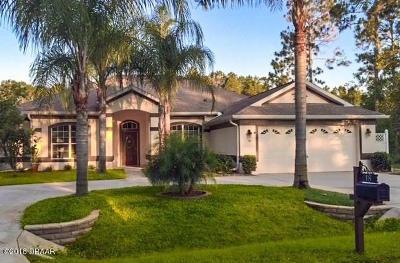 Palm Coast Single Family Home For Sale: 18 Riverside Lane