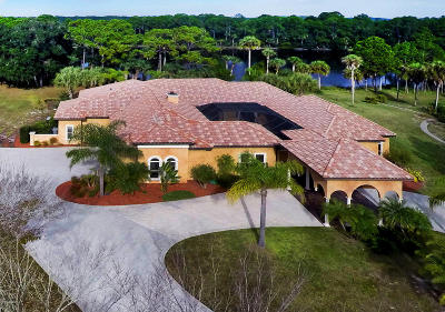 Ormond Beach Single Family Home For Sale: 224 Vista Della Toscana