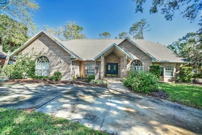 Ormond Beach Single Family Home For Sale: 59 Shadowcreek Way