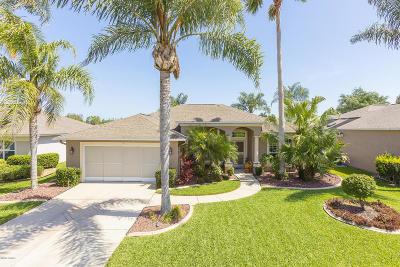 Port Orange Single Family Home For Sale: 793 Ashton Lakes Boulevard