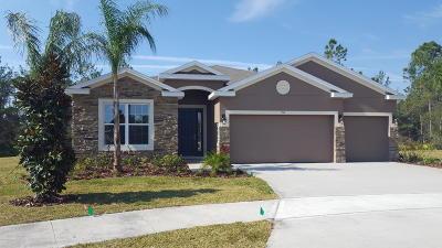 Ormond Beach Single Family Home For Sale: 485 River Square Lane