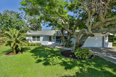 New Smyrna Beach Single Family Home For Sale: 515 Evergreen Street