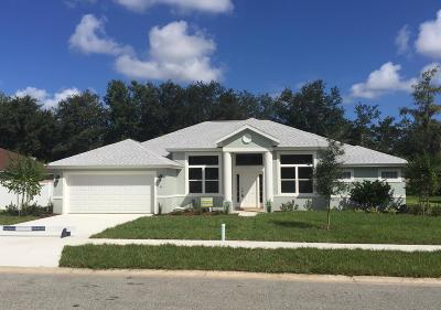 Ormond Beach Single Family Home For Sale: 99 Chrysanthemum Drive
