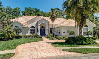 Ormond Beach Single Family Home For Sale: 3791 Carrick Drive