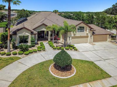 Port Orange Single Family Home For Sale: 6600 Merryvale Lane