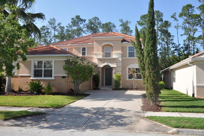 New Smyrna Beach Single Family Home For Sale: 3363 Pegaso Avenue