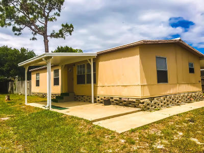 Port Orange Single Family Home For Sale: 230 Sand Pebble Circle