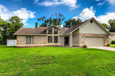 Port Orange Single Family Home For Sale: 807 Sanders Road